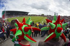 Mayo supporters in attendance at the match 13/5/2018