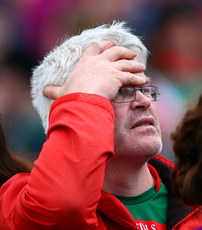 A Mayo supporter looks on 11/6/2017
